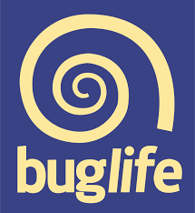 Buglife logo linking to their website